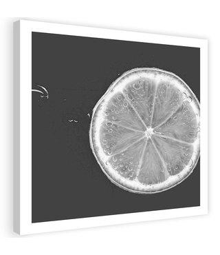 Schilderij Schijf Limoen, 80x80cm, zwart/wit