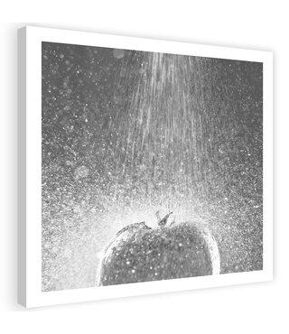 Schilderij Tomaat onder de kraan, 80x80cm, zwart/wit