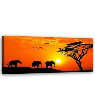 Schilderij Oranje Afrika, 120x40 (wanddecoratie)