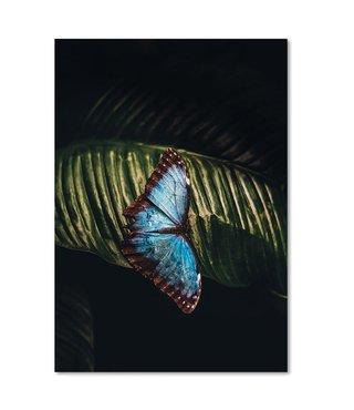 Schilderij Vlinder op een blad, 4 maten (wanddecoratie)