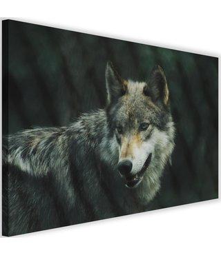 Schilderij Grijze wolf, 2 maten (wanddecoratie)