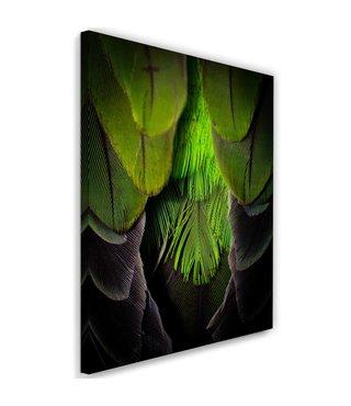 Schilderij Groene veren, 2 maten (wanddecoratie)