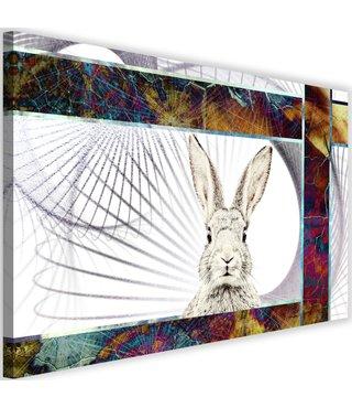 Schilderij Verlegen konijn, 2 maten, multi-gekleurd (wanddecoratie)