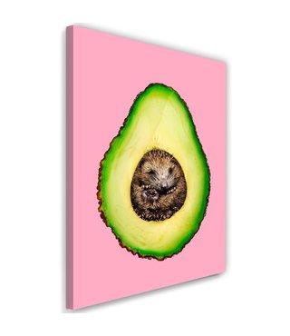 Schilderij Egel avocado, 2 maten, roze/groen (wanddecoratie)
