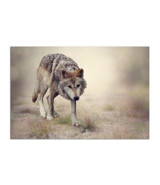 Schilderij Sluipende wolf, 2 maten