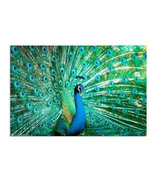 Schilderij Pauw, 2 maten, blauw-zwart-groen