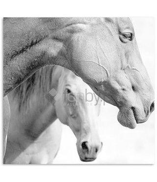 Schilderij Twee paarden, 80x80cm, zwart-wit