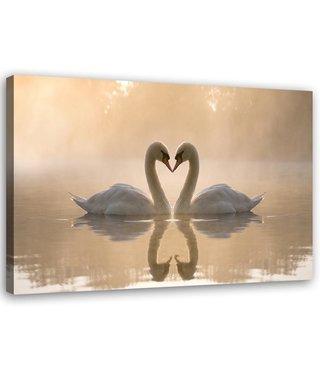 Schilderij Twee zwanen in het water, 2 maten, wit-beige