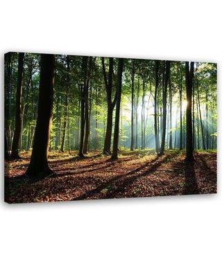 Schilderij Het groene bos, 2 maten