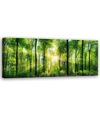 Schilderij Zonsopkomst door de bomen, 120x40cm