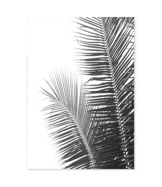 Schilderij Palm bladeren, 4 maten, zwart-wit