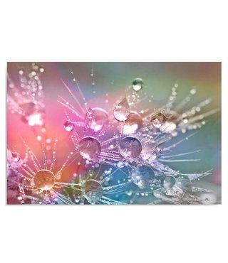 Schilderij Waterdruppels op een bloem, 4 maten