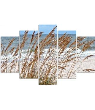 Schilderij , Zeegras op het Strand , Multikleur ,4 maten , 5 luik , wanddecoratie , Premium print , XXL