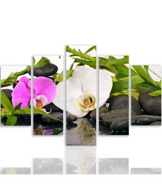 Schilderij , Orchideeën  op stenen  , multikleur ,4 maten , 5 luik , wanddecoratie , Premium print , XXL