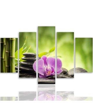 Schilderij , Orchidee  bij grijze stenen in bos , roze grijs groen ,4 maten , 5 luik , wanddecoratie , Premium print , XXL