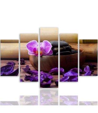 Schilderij , Orchidee en paarse blaadje bij grijze steen ,4 maten , 5 luik , wanddecoratie , Premium print , XXL