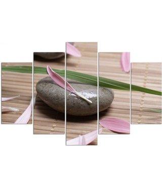 Schilderij , Grijze steen met bladeren , groen grijs roze ,4 maten , 5 luik , wanddecoratie , Premium print , XXL
