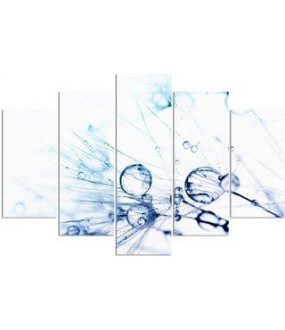 Schilderij , Waterdruppels op Paardenbloem 2 , 4 maten , 5 luik , blauw wit , Premium print , XXL