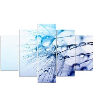 Schilderij , Waterdruppels op Paardenbloem , 4 maten , 5 luik , blauw zwart , Premium print , XXL