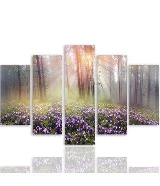Schilderij , Krokussen in bos , 4 maten , 5 luik , multikleur , wanddecoratie , XXL