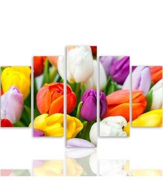 Schilderij , Gekleurde Tulpen , 4 maten , 5luik, multikleur , wanddecoratie , XXL