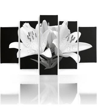 Schilderij , Witte Lelies , 4 maten , 5 luik , zwart wit , wanddecoratie , XXL