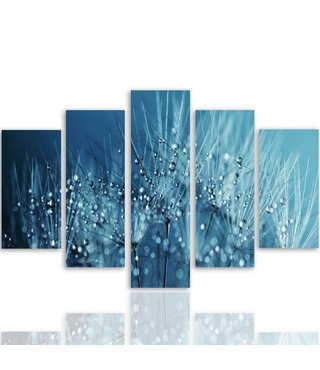 Schilderij , Paardebloem met waterdruppels , 4 maten , 5 luik , blauw wit , Premium print ,XXl