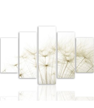 Schilderij , Pluizenbol , witte bloem , 4 maten , 5 luik , Premium print , XXL