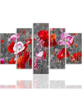 Schilderij , Klaprozen , 4 maten , 5 luik , multikleur , Premium print , XXL