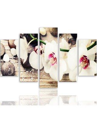 Witte Orchidee op Zen stenen, 5 luik, 4 maten, wanddecoratie