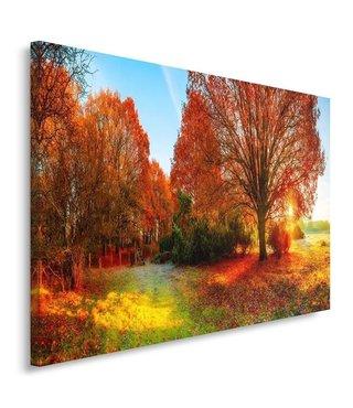 Schilderij - Herfst landschap - Print op canvas , Multikleur , 100x70cm , Premium print