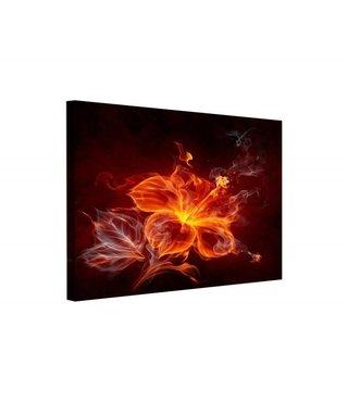 Schilderij - Kracht van vlammen, 3 maten, premium print