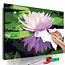 Doe-het-zelf op canvas schilderen - Water Lily
