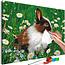 Doe-het-zelf op canvas schilderen - Rabbit in the Meadow