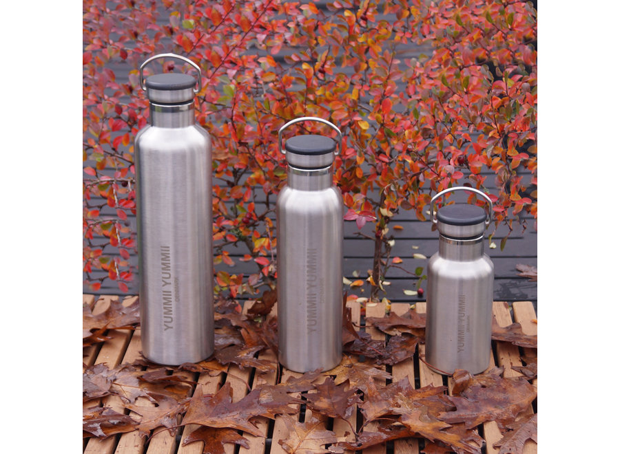 Thermofles – 600 ml - Stainless Steel – Zwart