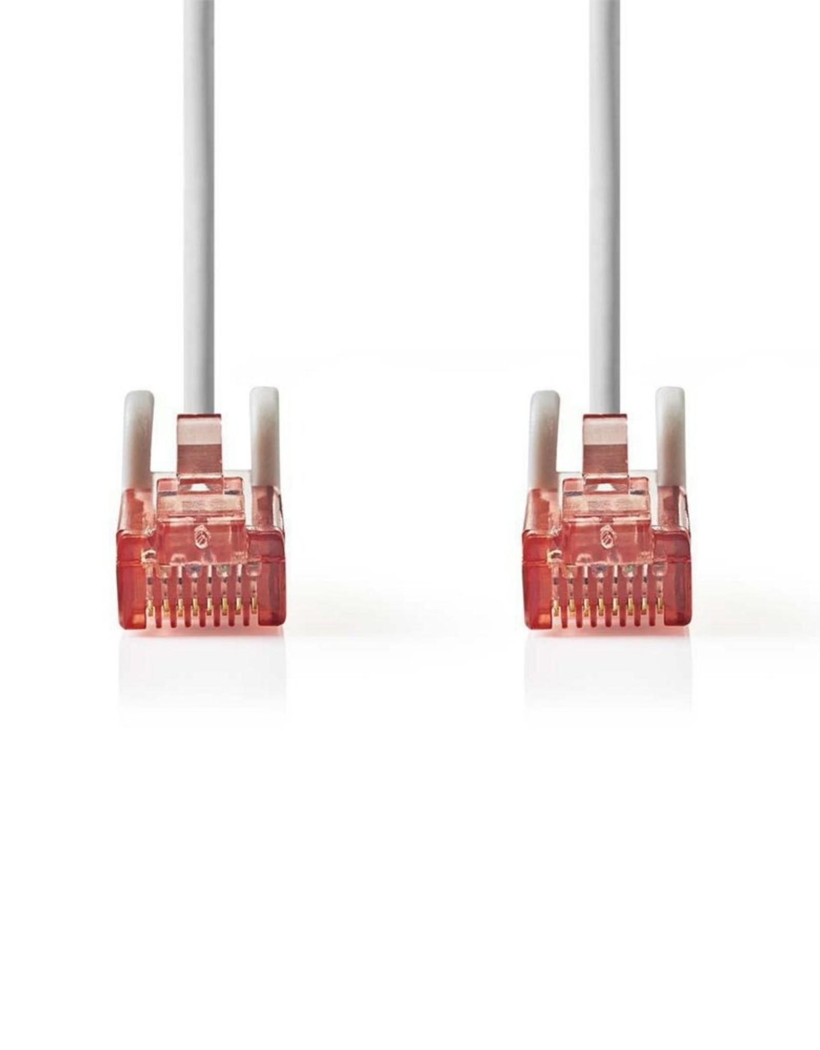 CAT6 UTP-Netwerkkabel/RJ45 3m Grijs