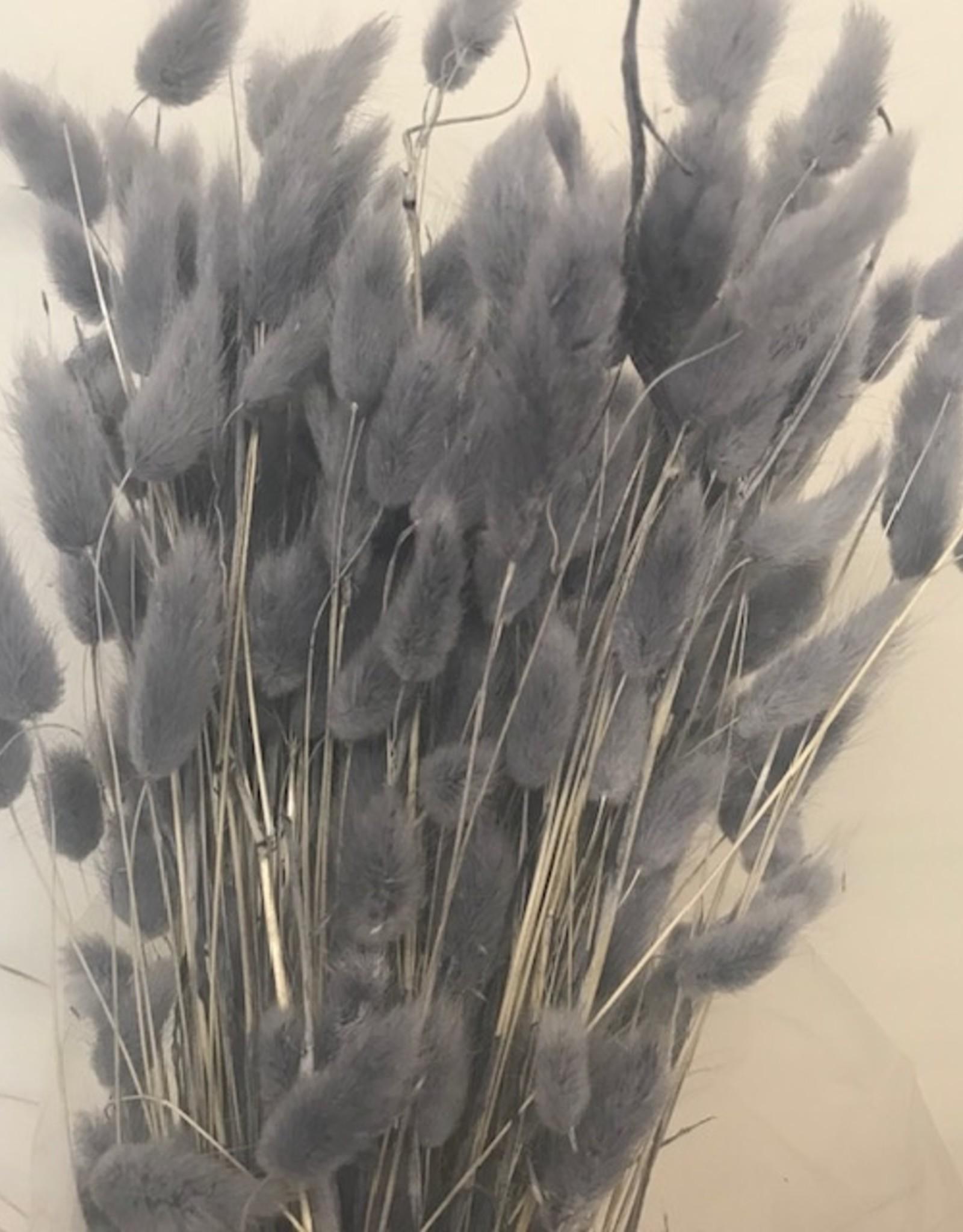 pluimpjes grijs