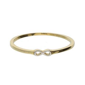 GLOW 14 karaat gouden ring infinity
