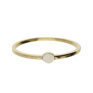 GLOW 14 karaat gouden ring met rond plaatje 214.1014