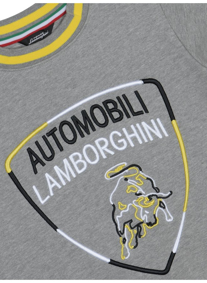 Automobili Lamborghini Sweatshirt Logoprint grau
