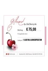 Geschenkbon 75 euro