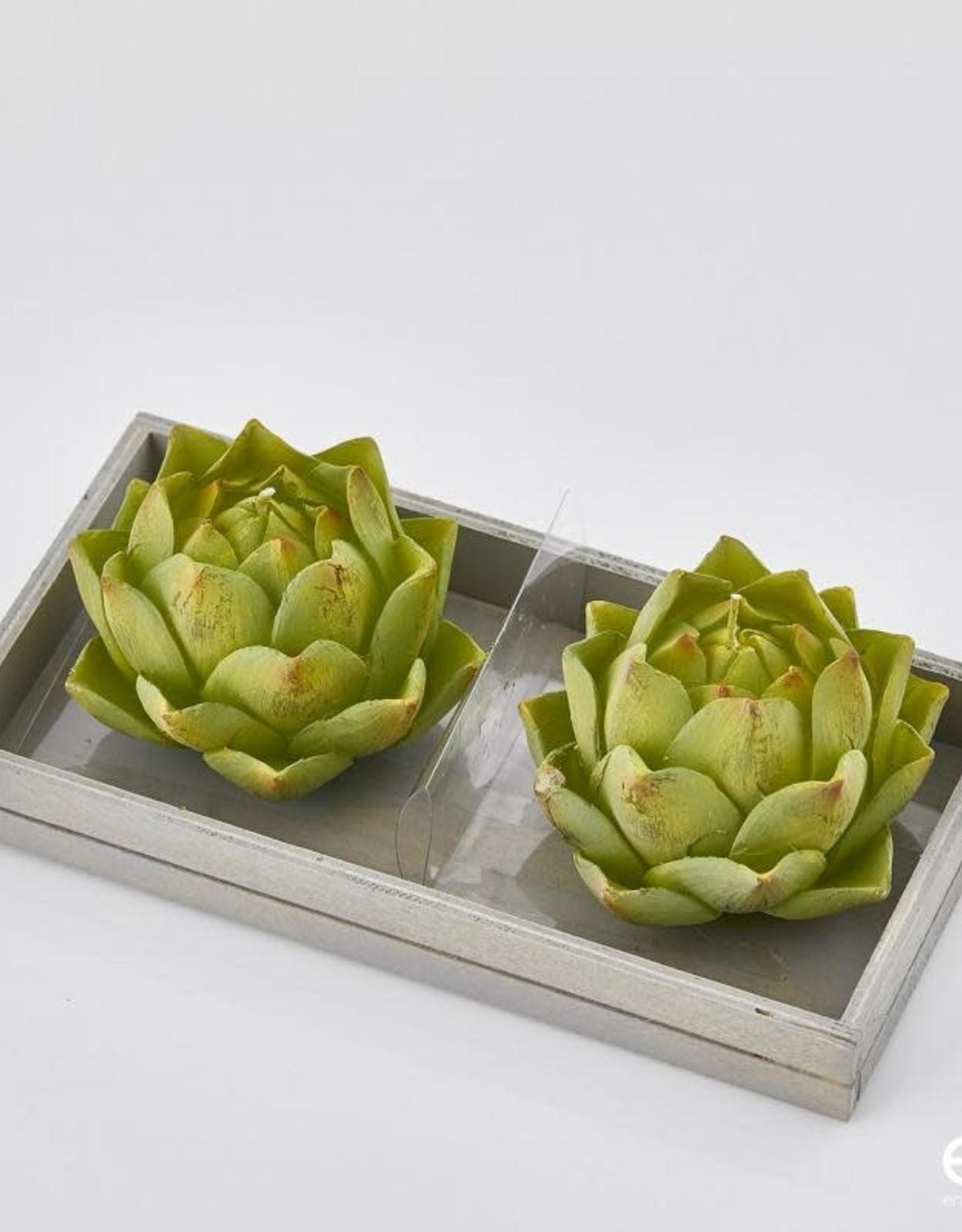 EDG Kaars cactus CF2PZ D9 B8 LT.GREEN