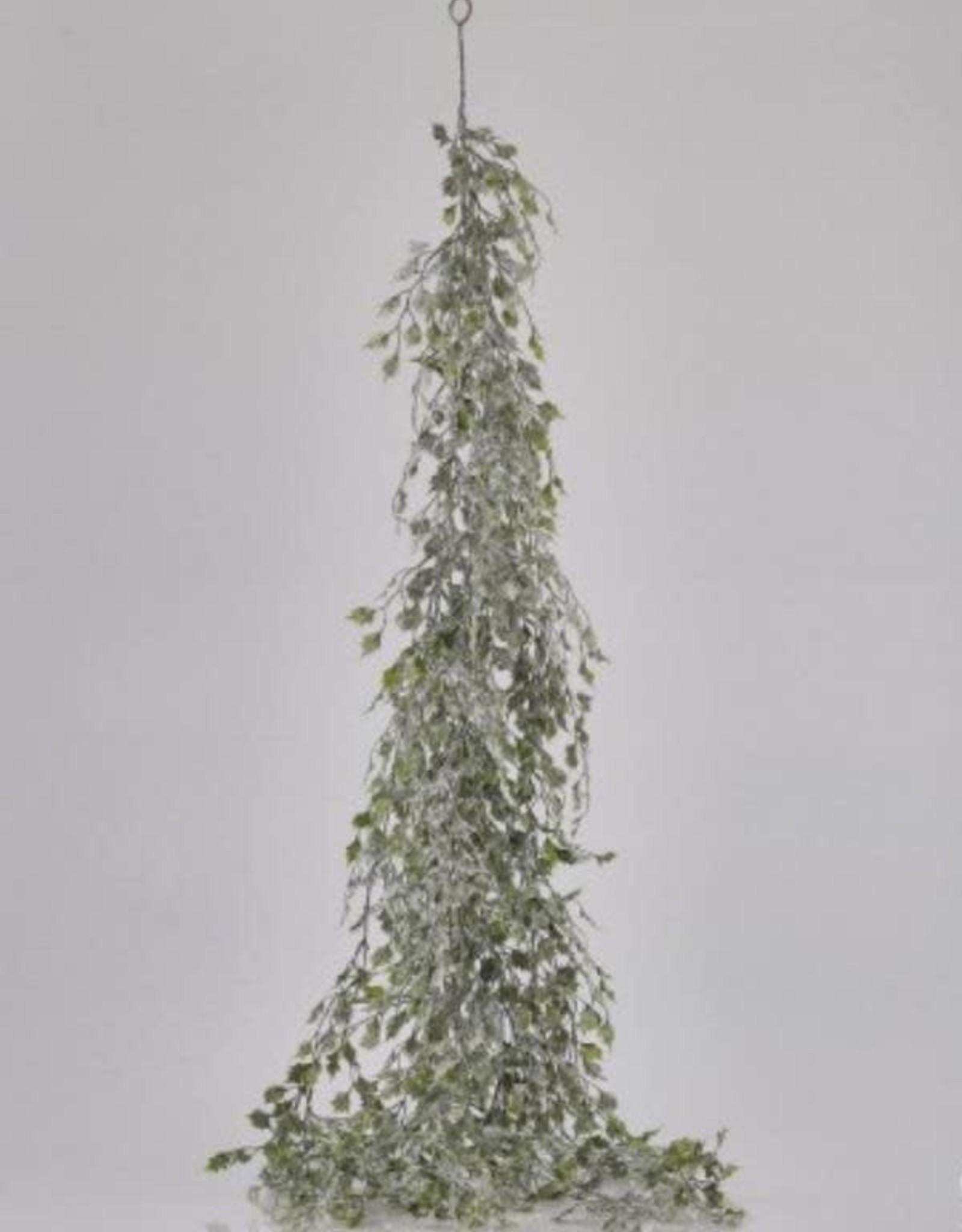 EDG FESTONE AGRIFOGLIO INNEV.H130 B8 WHITE GREEN