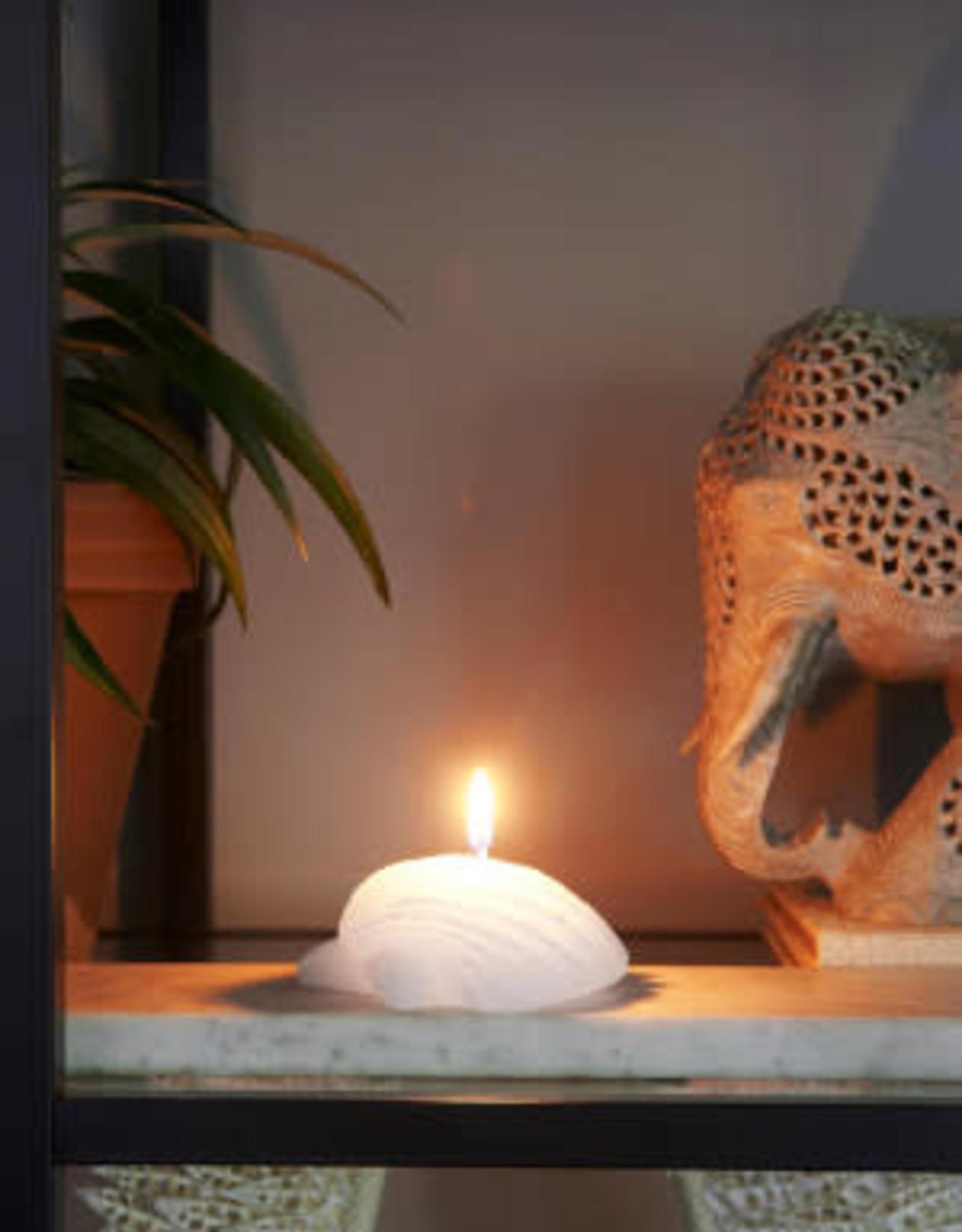 Rivièra Maison Seashell Candle white