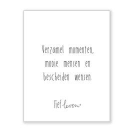 Mini poster • Verzamel momenten