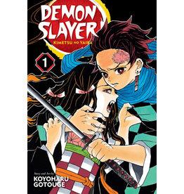 Demon Slayer Volume 01 (Engelstalig)