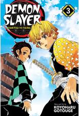 Demon Slayer Volume 03 (Engelstalig) - Manga