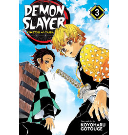 Demon Slayer Volume 03 (English version)