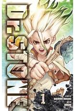 Dr. Stone 01 (Engelstalig)