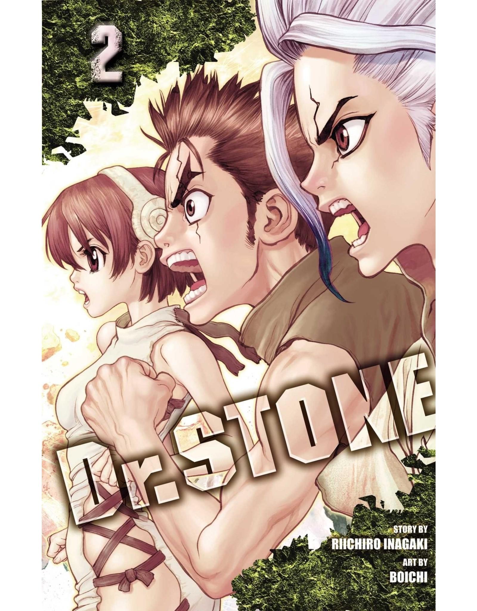 Dr. Stone 02 (Engelstalig)